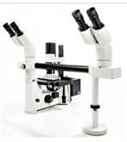 常规倒置荧光显微镜