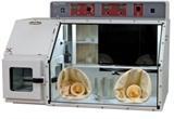 微氧培养箱