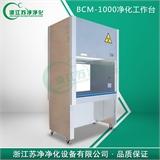 BCM-1000单人生物净化工作台(有排风系统,正压风)