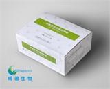 甲胎蛋白AFP检测试剂盒