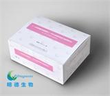 β-人绒毛膜促性腺激素检测试剂盒