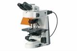 50i实验室研究级正置显微镜