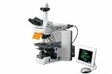 尼康正置显微镜80i