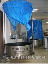 Morris水迷宫