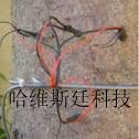 SF-L树干径流仪