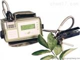 WH/SPAD-502 叶绿素含量测定仪