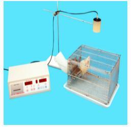 小动物活动记录仪 自主活动记录仪