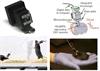 微型荧光显微镜