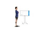 SAB-BALANCE平衡能力分析系统,姿势控制评估系统
