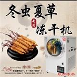 欣谕虫草冻干机中药冷冻干燥机XY-FD-L1A