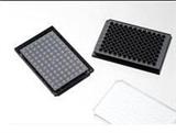 J04961百千生物96孔玻底细胞培养板黑色避光玻底0.17mm玻底板