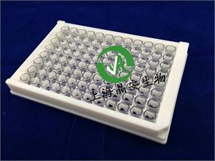 J09626百千生物96孔石英微孔酶标板价格96孔可拆卸石英酶标条测紫外线石英板玻璃板