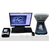 大米品质分析仪