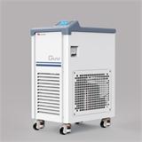 长城实验室仪器低温冷却液循环泵DLSB-5/20
