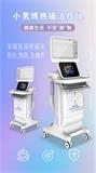 前列腺热磁治疗仪多少钱