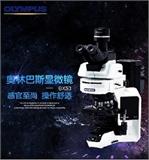 BX53 生物显微镜