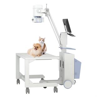 宠物数字化X光机:普爱医疗品牌的宠物DR优势