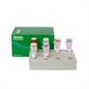 BAR基因核酸检测试剂盒