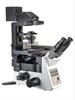 CTC全景扫描分析系统